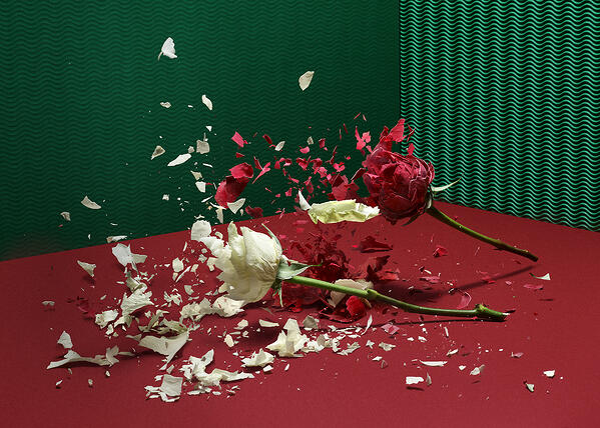 Broken Flower_02_ok