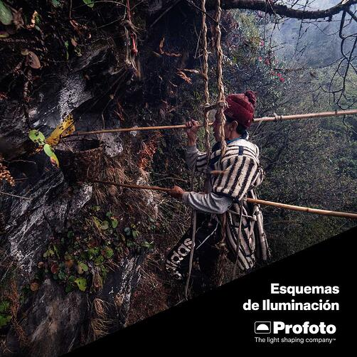 ebook-the-elders